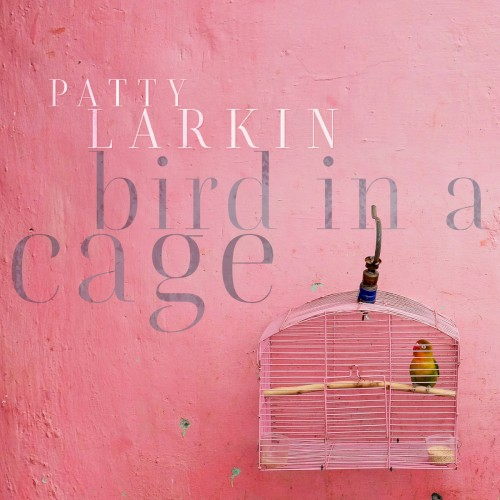 Album Poster | Patty Larkin | Passing Through