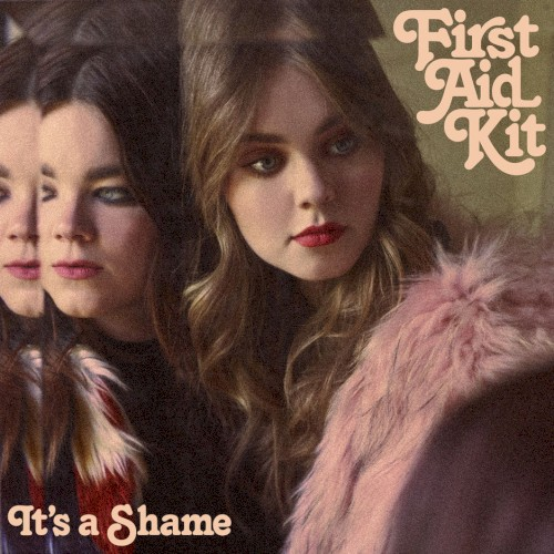 It's a Shame (Single)