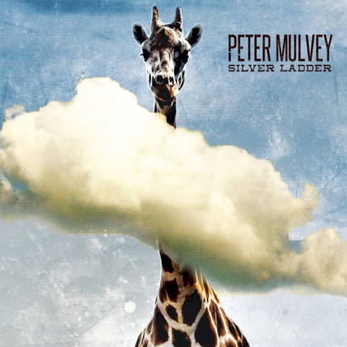 Album Poster | Peter Mulvey | What Else Was It?